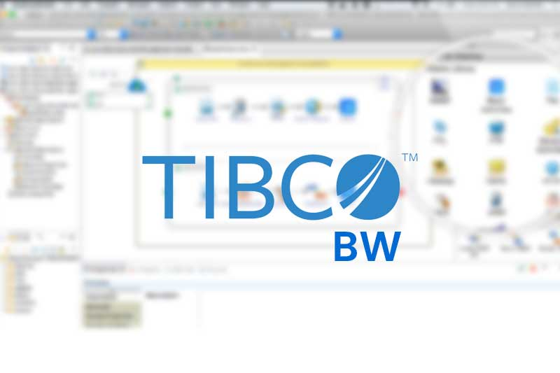tibco bw project support  benchteq
